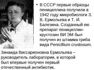 В СССР первые образцы пенициллина получили в 1942 году микробиологи З. В. Ерм
