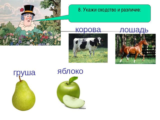 8. Укажи сходство и различие: корова лошадь груша яблоко