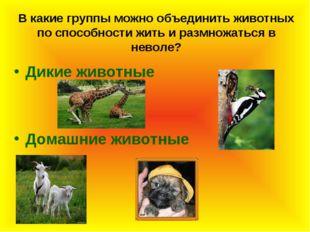 В какие группы можно объединить животных по способности жить и размножаться в