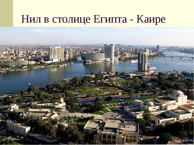 Нил в столице Египта - Каире