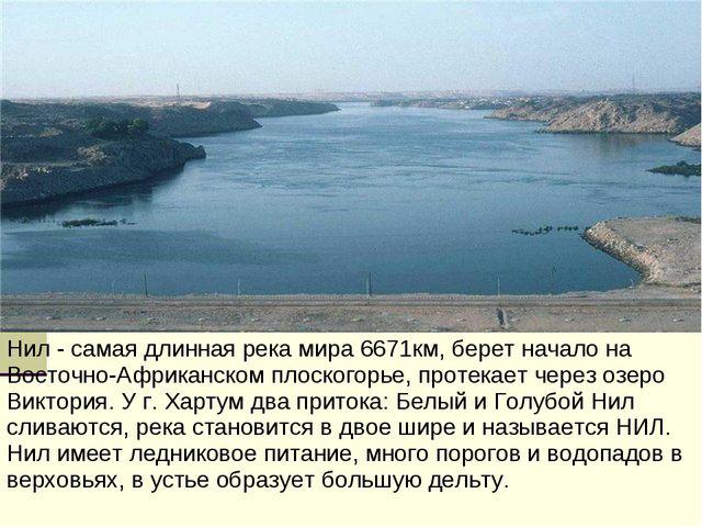 Нил - самая длинная река мира 6671км, берет начало на Восточно-Африканском пл...