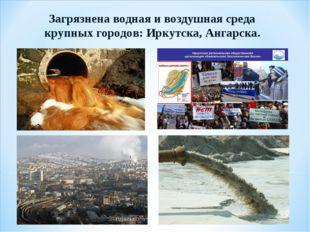 Загрязнена водная и воздушная среда крупных городов: Иркутска, Ангарска.