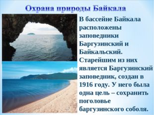 В бассейне Байкала расположены заповедники Баргузинский и Байкальский. Старей