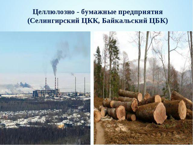 Целлюлозно - бумажные предприятия (Селингирский ЦКК, Байкальский ЦБК)