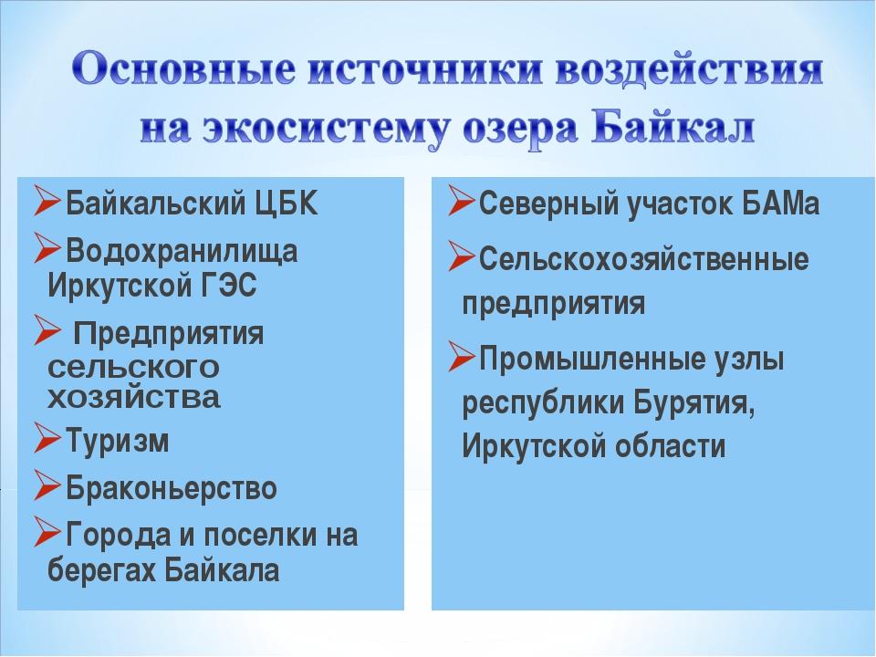 Байкальский ЦБК Водохранилища Иркутской ГЭС Предприятия сельского хозяйства Т...