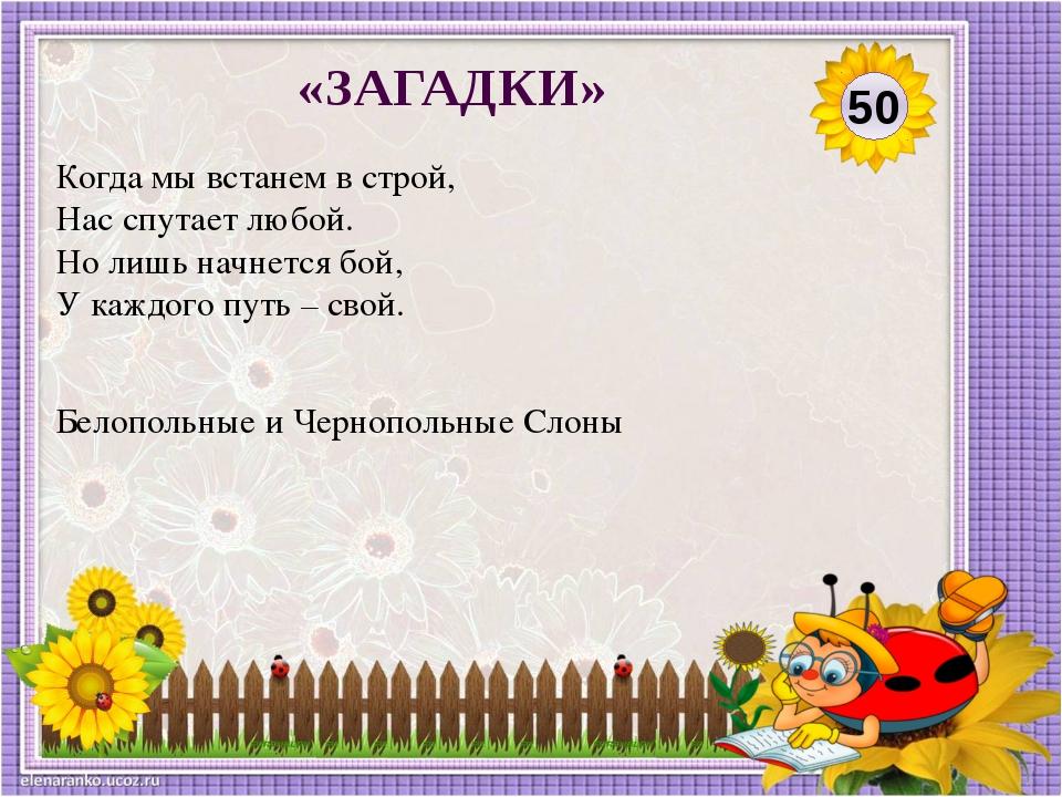 Турнир Разновидность шахматного соревнования, при котором ряд участников игра...