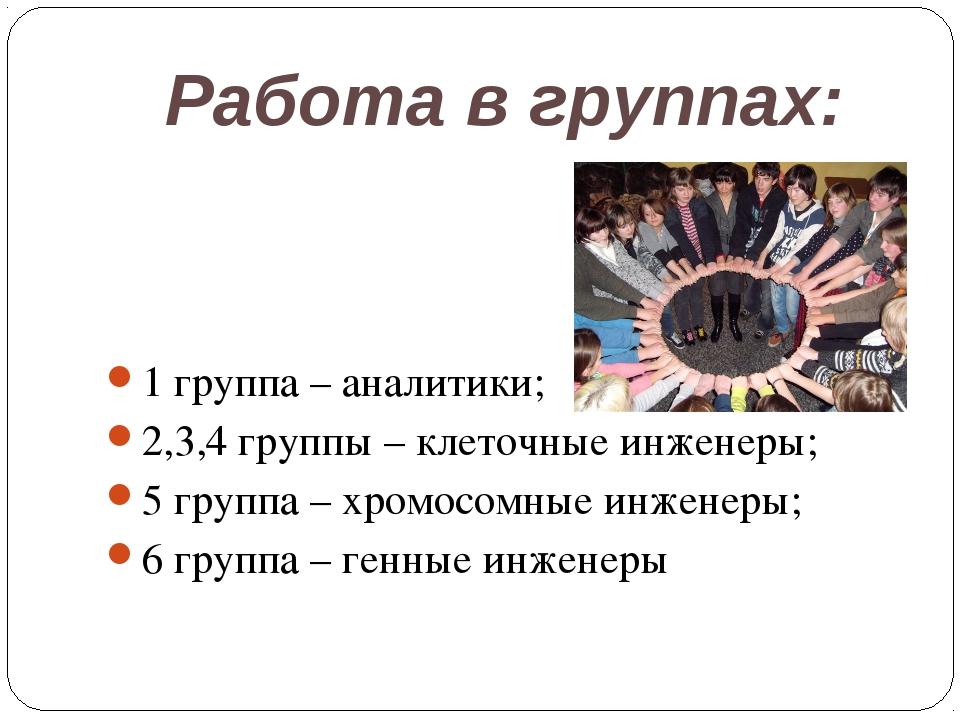 Работа в группах: 1 группа – аналитики; 2,3,4 группы – клеточные инженеры; 5...