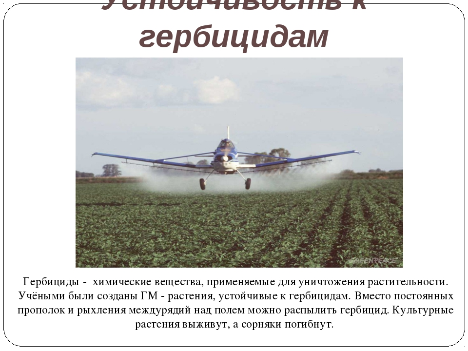 Устойчивость к гербицидам Гербициды - химические вещества, применяемые для ун...