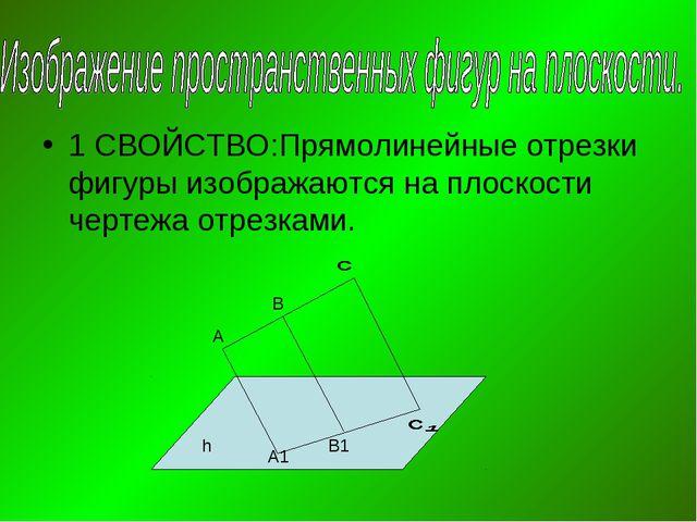 1 СВОЙСТВО:Прямолинейные отрезки фигуры изображаются на плоскости чертежа отр...