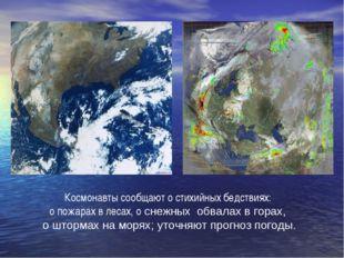 Космонавты сообщают о стихийных бедствиях: о пожарах в лесах, о снежных обвал