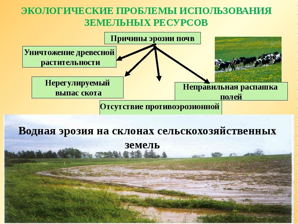 Проблемы связанные с тем что земельный