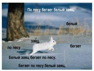 Белый заяц бегает по лесу. заяц белый бегает по лесу По лесу бегает белый зая