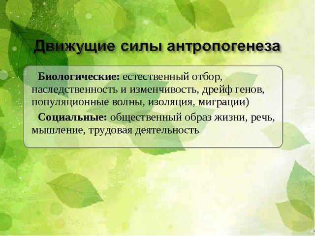 Биологические: естественный отбор, наследственность и изменчивость, дрейф ген...