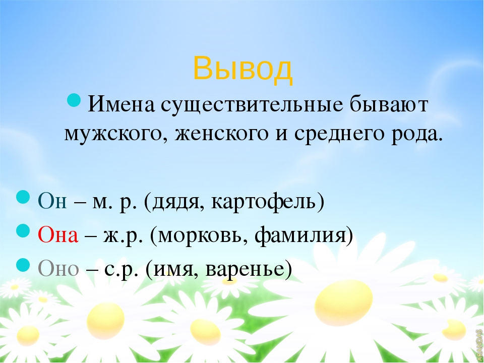 Вывод Имена существительные бывают мужского, женского и среднего рода. Он – м...