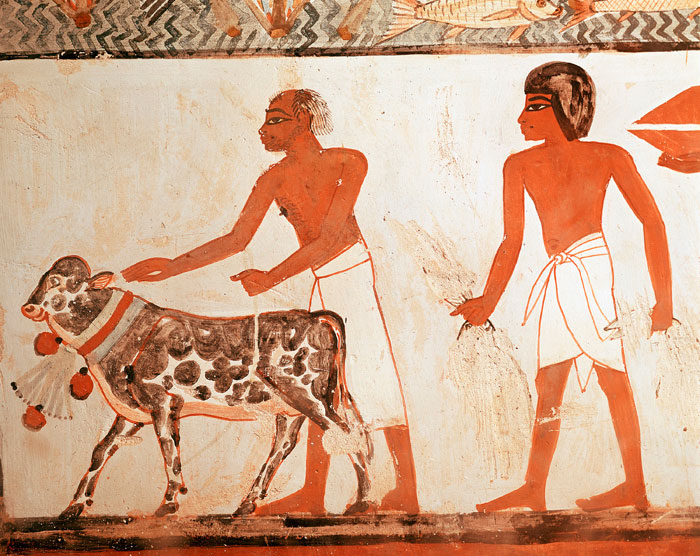 фрески на стену артикул 600032 размер 100 см х 126 см