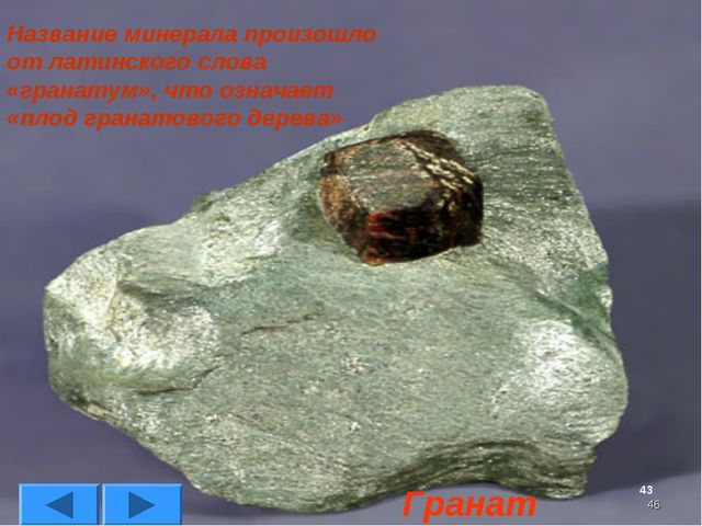 * Название минерала произошло от латинского слова «гранатум», что означает «п...