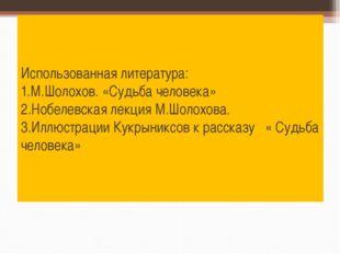 Использованная литература: 1.М.Шолохов. «Судьба человека» 2.Нобелевская лекци