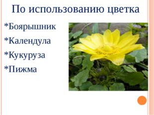 По использованию цветка *Боярышник *Календула *Кукуруза *Пижма