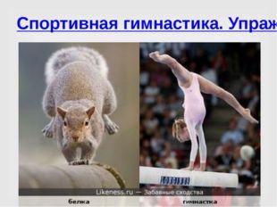 Спортивная гимнастика. Упражнения на бревне.