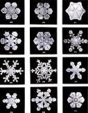 180px-SnowflakesWilsonBentley