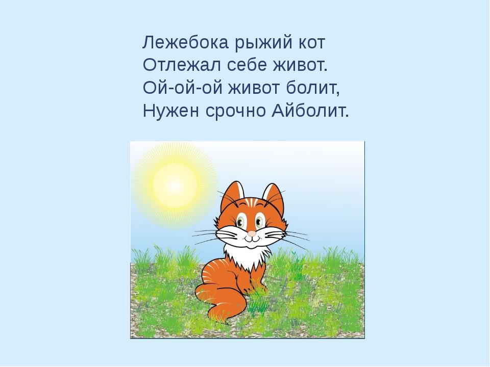 Лежебока рыжий кот Отлежал себе живот. Ой-ой-ой живот болит, Нужен срочно Айб...
