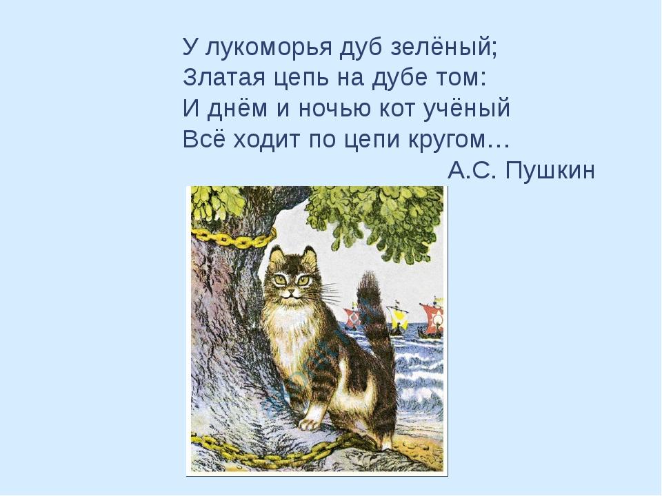 У лукоморья дуб зелёный; Златая цепь на дубе том: И днём и ночью кот учёный...