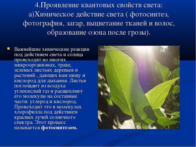 4.Проявление квантовых свойств света: а)Химическое действие света ( фотосинте...
