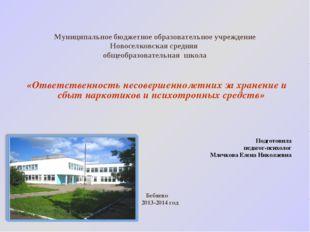 Муниципальное бюджетное образовательное учреждение Новоселковская средняя общ