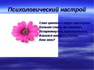 Психологический настрой Спал цветок и вдруг проснулся Больше спать не захотел