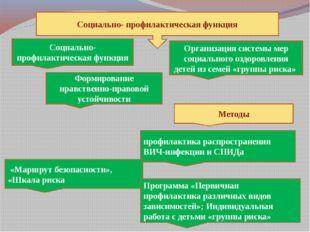 Социально- профилактическая функция Социально- профилактическая функция Орга