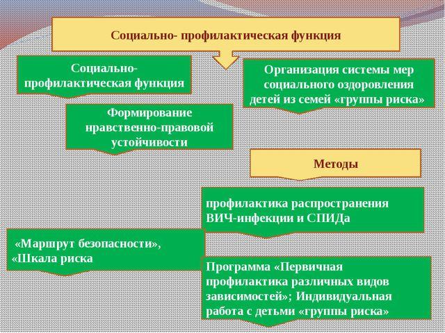 Социально- профилактическая функция Социально- профилактическая функция Орга...