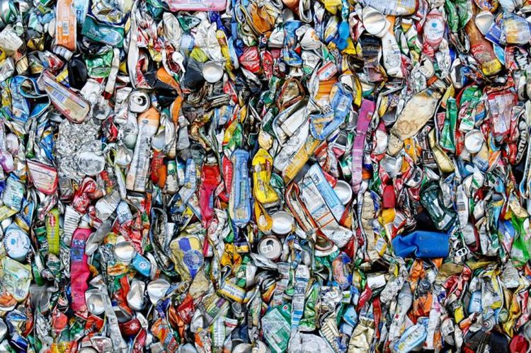 Факты: Время разложения различного бытового мусора