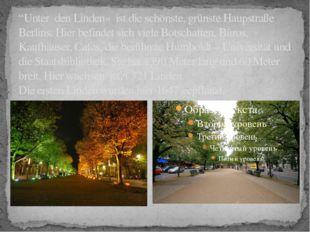 """""""Unter den Linden» ist die schönste, grünste Haupstraße Berlins. Hier befinde"""