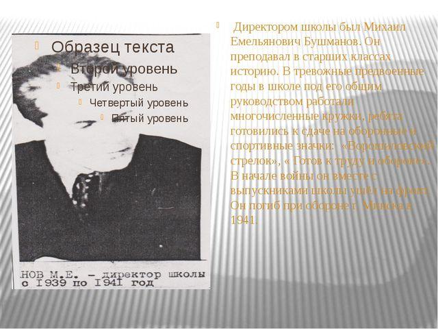 Директором школы был Михаил Емельянович Бушманов. Он преподавал в старших кл...