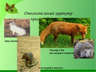 Относительный характер приспособленности Заяц беляк Охотящийся мангуст Лисица