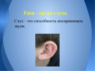 Слух - это способность воспринимать звуки. Уши - орган слуха