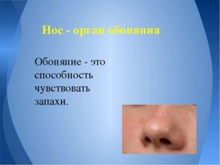 Нос - орган обоняния Обоняние - это способность чувствовать запахи.