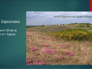 Участок Баркаловка Расположен в 120 км на юго-восток от г. Курска