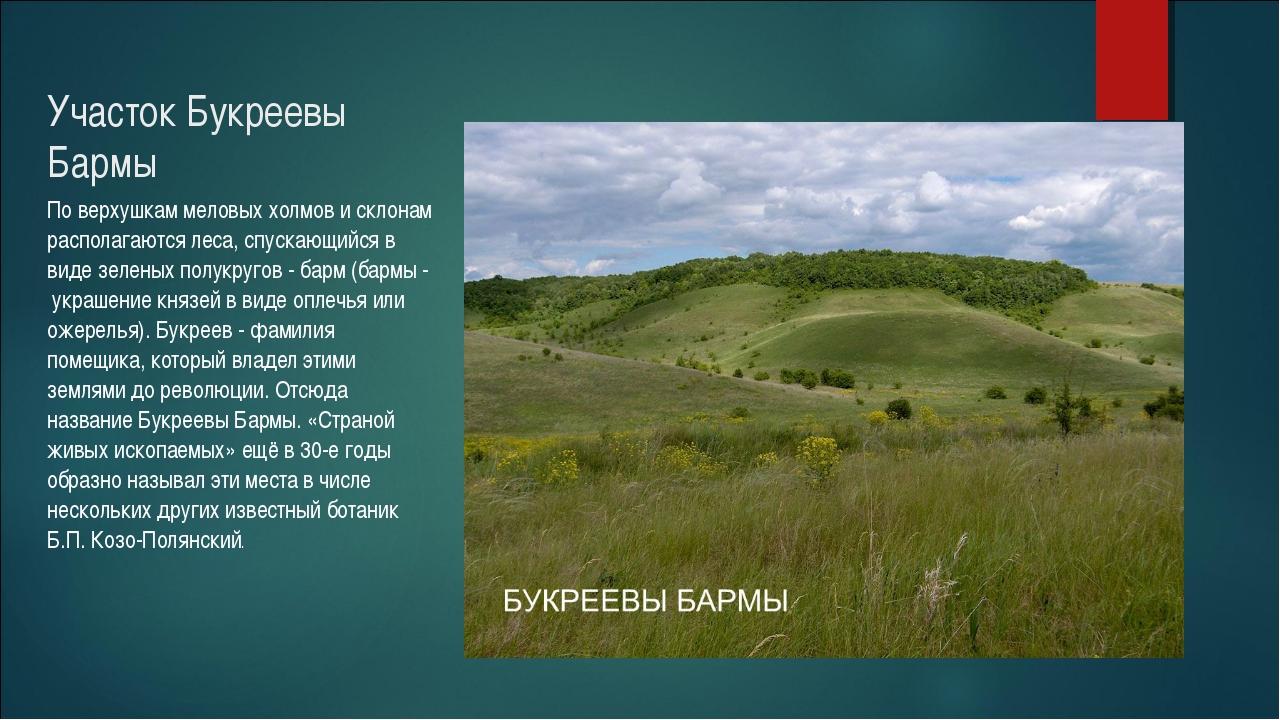 Участок Букреевы Бармы По верхушкам меловых холмов и склонам располагаются ле...