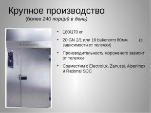 Крупное производство (более 240 порций в день) 180/170 кг 20 GN 2/1 или 16 ba
