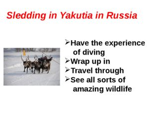 Sledding in Yakutia in Russia Have the experience of diving Wrap up in Travel