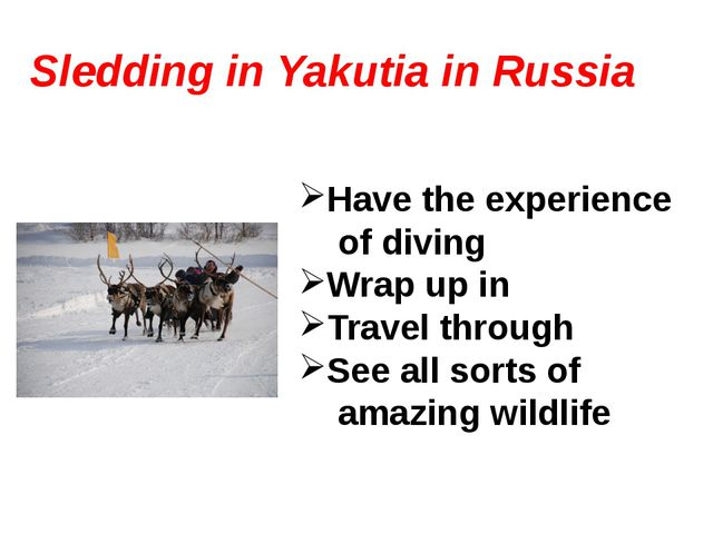 Sledding in Yakutia in Russia Have the experience of diving Wrap up in Travel...