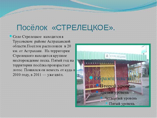 Посёлок «СТРЕЛЕЦКОЕ». Село Стрелецкое находится в Трусовском районе Астрахан...