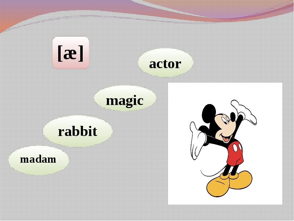 [æ] madam rabbit magic actor