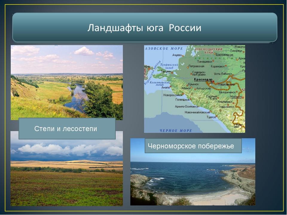 Степи и лесостепи Черноморское побережье
