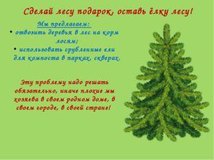 Сделай лесу подарок, оставь ёлку лесу! Мы предлагаем: отвозить деревья в лес
