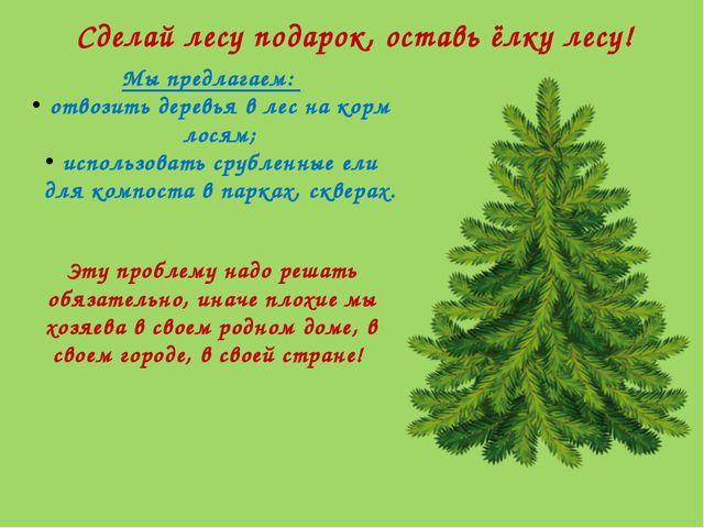 Сделай лесу подарок, оставь ёлку лесу! Мы предлагаем: отвозить деревья в лес...