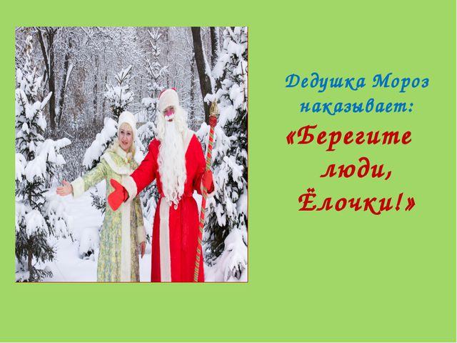 Дедушка Мороз наказывает: «Берегите люди, Ёлочки!»