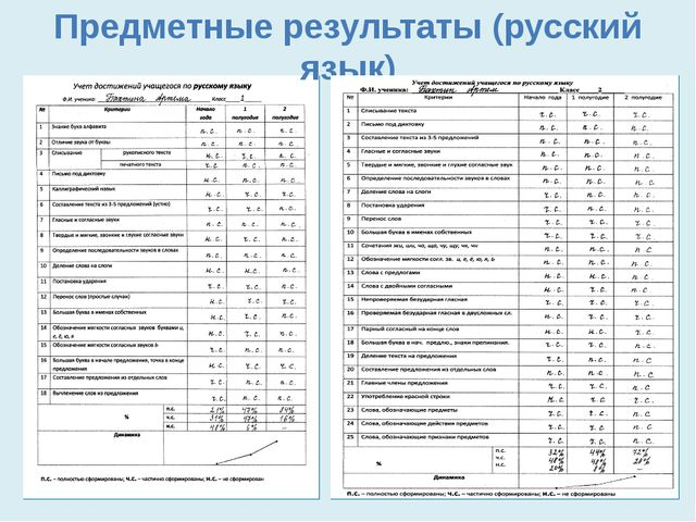 Предметные результаты (русский язык)