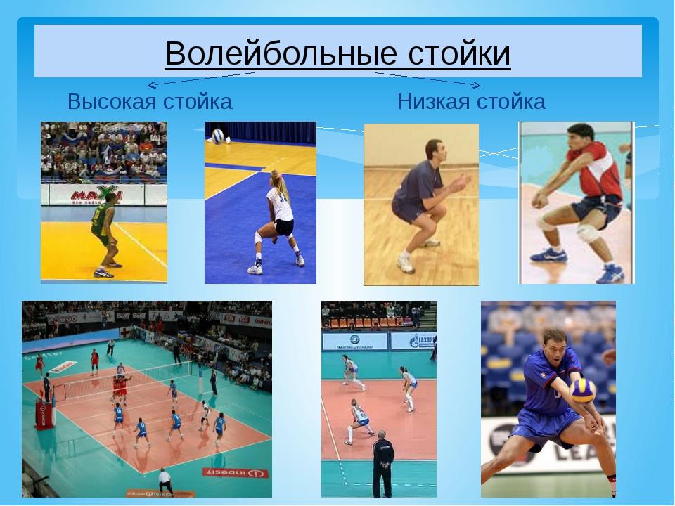 Волейбольные стойки Высокая стойка Низкая стойка